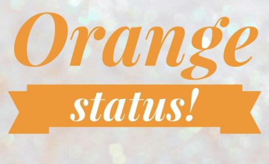SpotOnMedics Orange Status